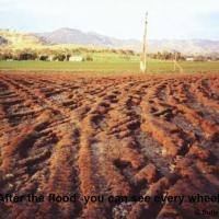 Zdjęcie po powodzi w Australii dobrze ilustrujące pokrycie pola śladami kół.